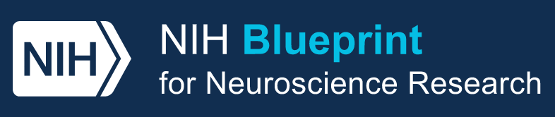 logo for NIH Blueprint for Neurosciences Research program